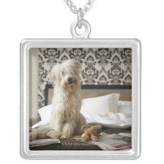 Dog sitting on bed with soft toys and newspaper silver plated necklace