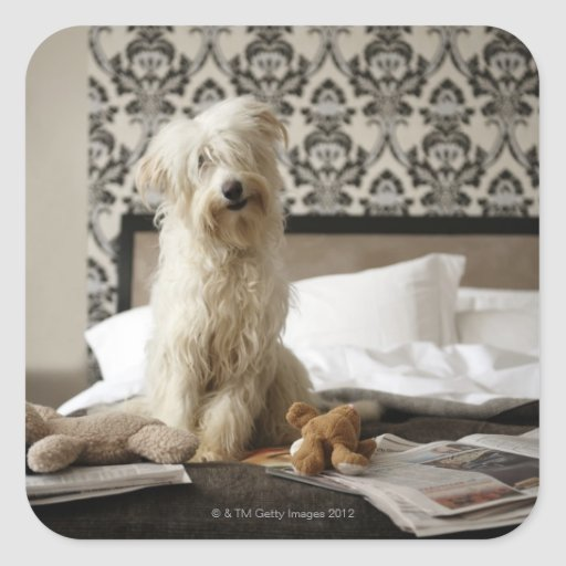 Dog sitting on bed with soft toys and newspaper square sticker