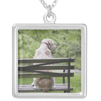 Dog sitting on park bench silver plated necklace