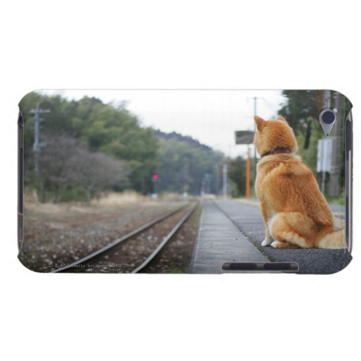 Dog sitting on train station barely there iPod case