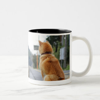 Dog sitting on train station mugs
