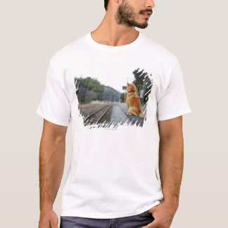 Dog sitting on train station T-Shirt