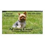 Dog sitting, pet sitting, dog care business card