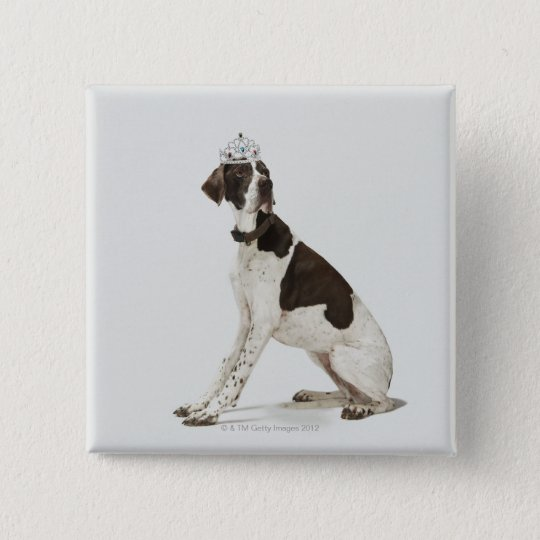 Dog sitting with a tiara on head pinback button