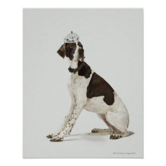 Dog sitting with a tiara on head poster