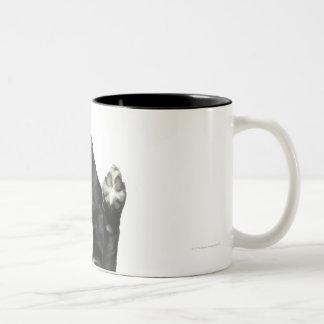 Dog sitting with paws up Two-Tone coffee mug
