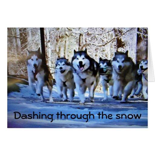 DOG SLED DASHING THRU SNOW CARDS