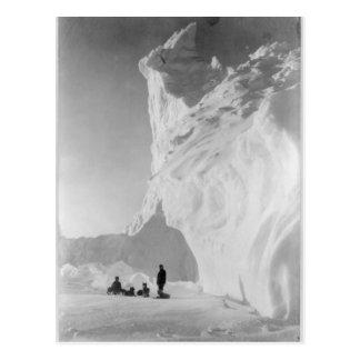 Dog Sled Team Resting by Iceberg Post Card