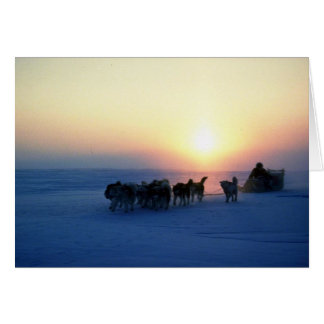 Dog sled travel at 45 degrees Celsius, Baffin Isla Card