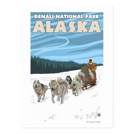 Dog Sledding Scene - Denali Nat'l Park, Alaska Post Card