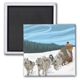 Dog Sledding Scene - Fairbanks, Alaska Fridge Magnets