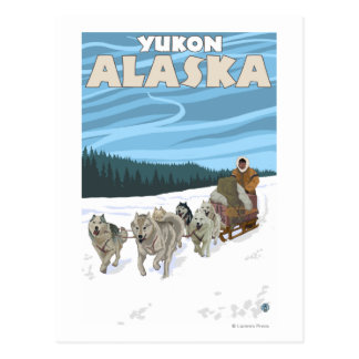 Dog Sledding Scene - Yukon, Alaska Postcard
