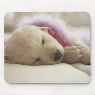 Dog sleeping on bed mouse pad