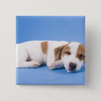 Dog sleeping pinback button