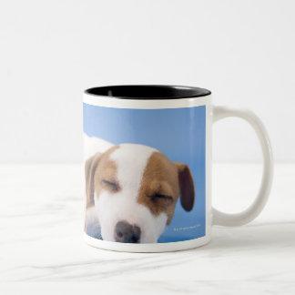 Dog sleeping Two-Tone coffee mug