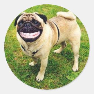 dog smile pug classic round sticker