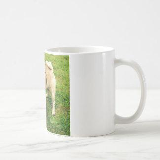 dog smile pug cute coffee mug