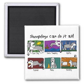 Dog Sports Old English Sheepdog Refrigerator Magnets