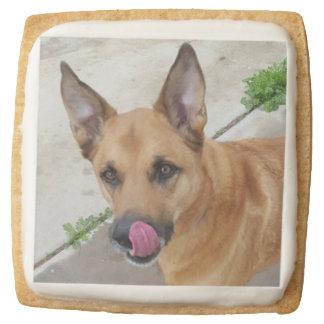 Dog Square Shortbread Cookie