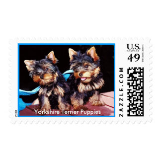 Dog Stamps - Yorkshire Terrier Puppy Love Postage