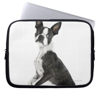 dog standing on 2 legs looking at camera computer sleeve