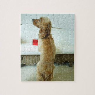 Dog standing on a couch with a gift jigsaw puzzle