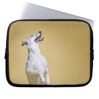 Dog standing on hind legs computer sleeve