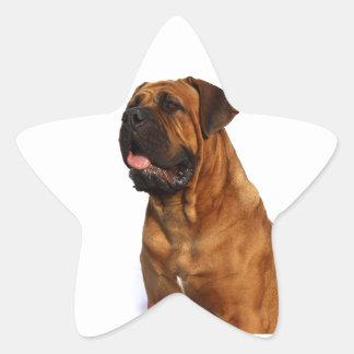Dog Star Sticker