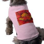 Dog Sweater Doggie Tee