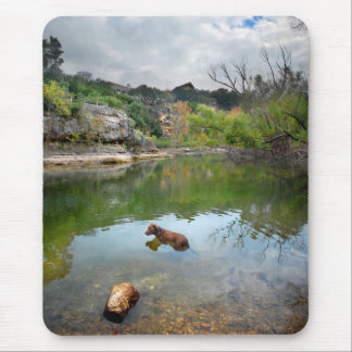 Dog swimming in Barton Creek - Austin Texas Mouse Pad