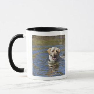 Dog swimming mug
