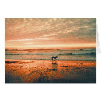 Dog Sympathy-Heidi Greeting Cards