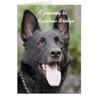 Dog sympathy - Rainbow Bridge Card