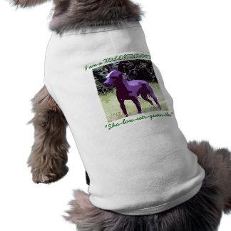 Dog T Color Dog Tee Shirt