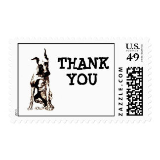 dog, THANK, YOU Postage Stamps