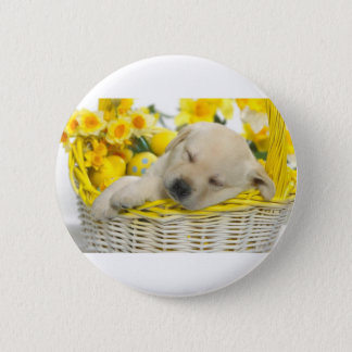 Dog Tired Button