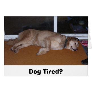 Dog tired? card