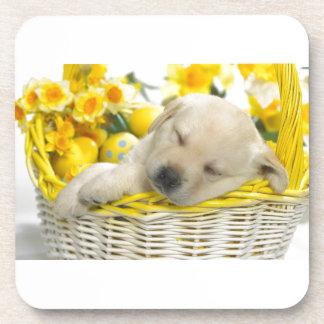 Dog Tired Coasters