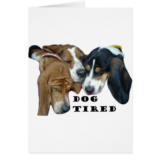 Dog Tired Greeting Cards
