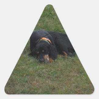 Dog Tired Triangle Sticker