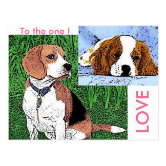 dog TLC Postcard