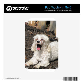 Dog touch skin for iPod touch 4G