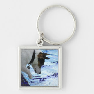 Dog touching water at the swimming pool keychain