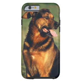 dog tough iPhone 6 case