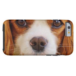 dog tough iPhone 6 case