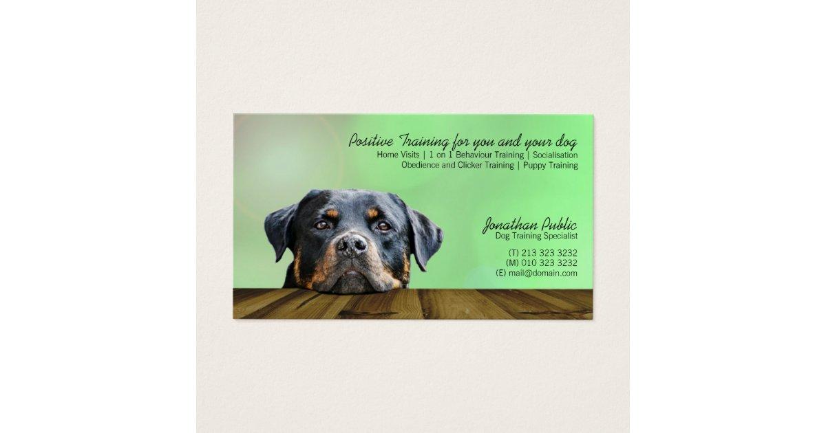 Dog Trainer Business Card | Zazzle.com