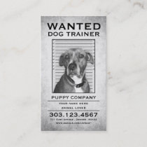 dog trainer wanted poster business card