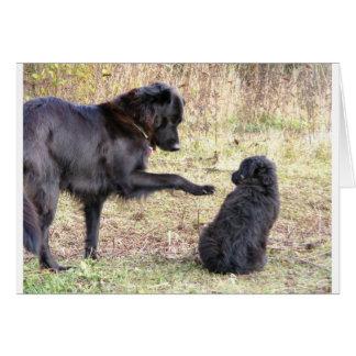 Dog Training-Customizable Card