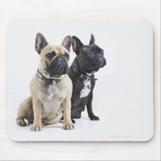 Dog training & obedience mouse pad