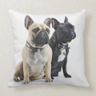 Dog training & obedience throw pillow